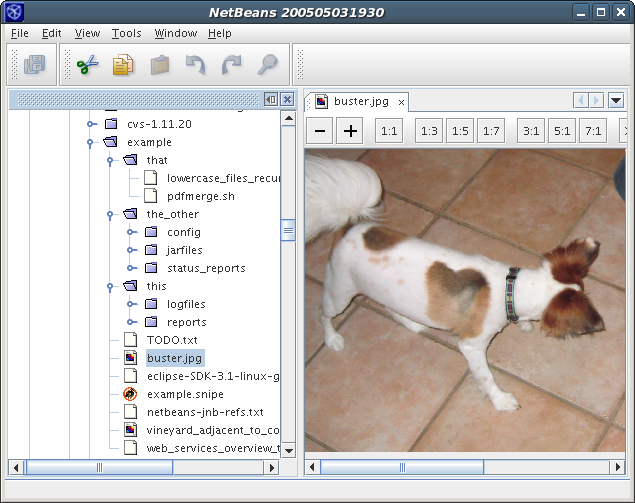 Screenshot of the displayed image file