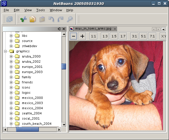 Screenshot of the Disk Explorer/Image Viewer Application