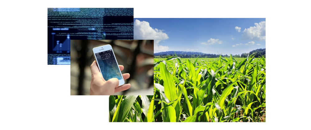 An agricultural biotechnology company needed a way to accurately diagnose crop disease and to provide customized, environmentally friendly solutions to its community of farmers.